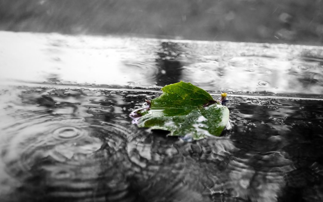 Is Your Roof Leaking When It Rains Heavily?
